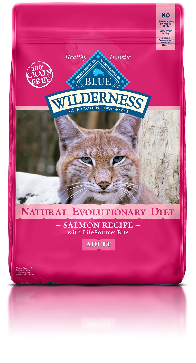 Dry Cat Food The Smart Cat Guide